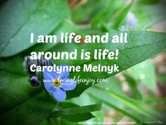 Life is a gift to be lived.  Awaken to the gift.