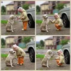 Funny pictures about Best friends forever. Oh, and cool pics about Best friends forever. Also, Best friends forever photos. Love My Dog, Puppy Love, Puppy Pics, Funny Animals, Cute Animals, Kids Animals, Video Humour, Best Friends Forever, Mans Best Friend
