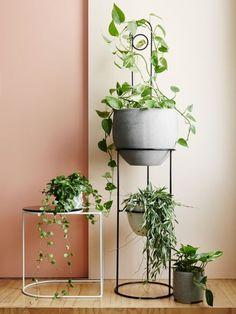 Cool Plant Stand Design Ideas for Indoor Houseplant #InteriorDesignPlants