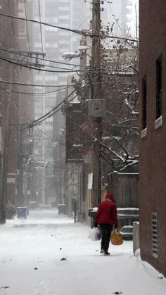 Snow Covered Alley in Chicago by Diane Bronstein Chicago Hope, South Side Chicago, Chicago Chicago, Travel Pictures, Cool Pictures, Chicago Heights, Chicago Pictures, The Blues Brothers, My Kind Of Town