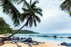 This stretch of paradise is Kalihiwai Beach near Princeville Kauai in Hawaii Hawaii Landscape, Kauai, Wall Art, Beach, Water, Outdoor, Gripe Water, Outdoors, The Beach