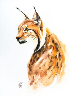 Buy Lynx, Watercolour by Andrzej Rabiega on Artfinder. Discover thousands of other original paintings, prints, sculptures and photography from independent artists.