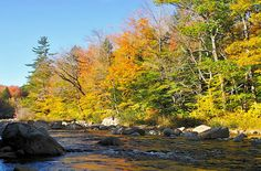 The White Mountain Trail in New Hampshire takes you through mountain passes and past waterfalls