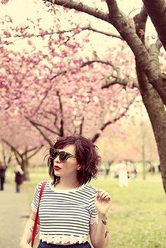 cherryblossoms by keikolynnsogreat, via Flickr