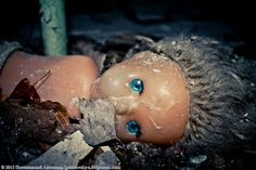 Spooky Dolls of Chernobyl - English Russia Childrens Dolls, Chernobyl Disaster, Story Of The World, Interesting News, Look At You, Sea Creatures, Creepy, Childhood, Schools