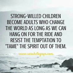 For parents of spirited & strong willed children everywhere.