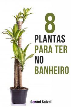 House Plants Decor, Patio Plants, Plant Decor, Indoor Plants, Plants Are Friends, Interior Plants, Green Life, Flowers Nature, Winter Garden