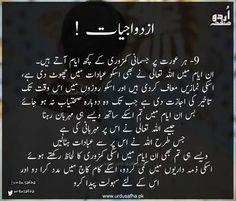 Best Quotes In Urdu, Urdu Quotes, Wisdom Quotes, Quotations, Hadith Quotes, Arabic Quotes, Husband Quotes From Wife, Wife Quotes, Woman Quotes