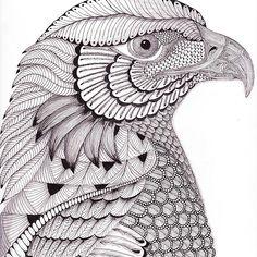 River Eagle, Ben Kwok Template, copyright Christianne Gerstner