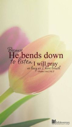 """PRAISING GOD HAS THIS EFFECT OF MAKING US WHOLE; of man renewing his purpose of being in his Creator: """"Though we cannot by our prayers give God any information, yet we must by our prayers give Him honor."""" ~ Matthew Henry"""