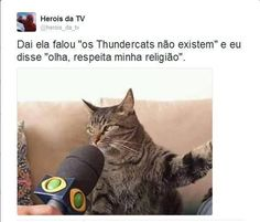 Este gato entrevistado, tá demais! >.< ' '