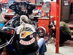Media – Hells Angels MC World Harley Davidson Custom Bike, Hells Angels, Custom Bikes, Pitbulls, Austria, Pit Bulls, Custom Motorcycles, Pitbull, Custom Bobber