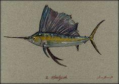 "Sailfish fishing billfish ocean wildlife animal 8x5"" 21x15 cm art original Watercolor painting by Juan bosco"