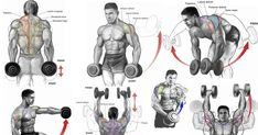 Top 6 Dumbbell Exercises for Shoulders  - all-bodybuilding.com
