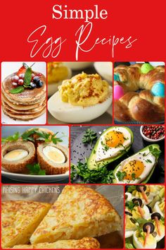 Simple egg recipes - pin for later. Chicken Egg Colors, Chicken Eggs, Egg Facts, Easy Egg Recipes, Shapes For Kids, Gordon Ramsey, Deviled Eggs Recipe, Backyard Chickens, Healthy Options