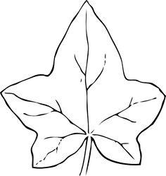 Ivy Leaf Template - ClipArt Best