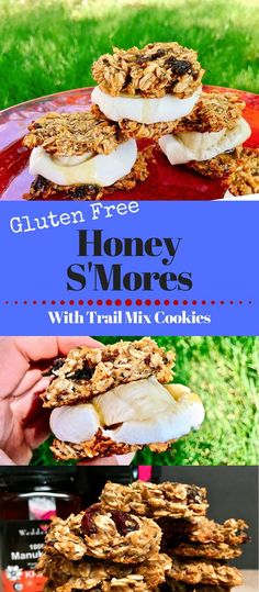 Instead of classic S'mores, mix things up with these gluten free Banana Honey S'mores on Trail Mix cookies. These camping snacks/desserts are vegan and made without refined sugar. Made with Wedderspoon Manuka Honey. Kids and adults eat them up. Camping Desserts, Camping Snacks, Camping Recipes, Camping Cooking, Oven Cooking, Gluten Free Oatmeal, Gluten Free Banana, Real Food Recipes, Dessert Recipes
