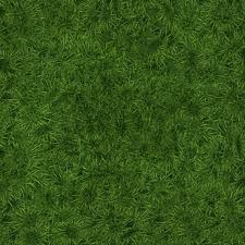 50 Free High Resolution Grass Textures for Designers Texture