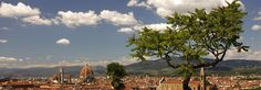 A szépséges Firenze Firenze, Vineyard, Outdoor, Outdoors, Vine Yard, Vineyard Vines, Outdoor Games, The Great Outdoors