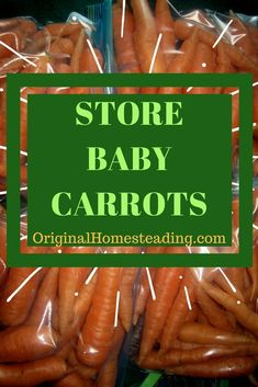 How to Store Carrots for Winter | Original Homesteading