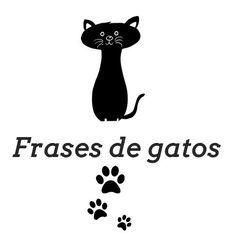 Frases de gatos. Tanto si estás pensando en dedicar una bonita frase de amor a tu gato como si buscas ideas graciosas y curiosas, has entrado al sitio adecuado, en este artículo de...