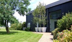 3 #white #planters with Silver birches stand at the height of the sports barn in this private residence in Essex.
