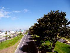 Dolores Park, Travel, Colombia, Viajes, Destinations, Traveling, Trips