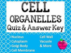 Cell Organelle Quiz with Word Bank & Answer KeyThis is a cell organelle quiz with a word bank and answer key. I use this quiz over and over with my students to ensure mastery.   Terms include: Cell Membrane Cell Wall Chloroplast Cytoplasm Endoplasmic Reticulum Golgi Body Lysosome Mitochondria Nucleus Organelle Ribosome Vacuole