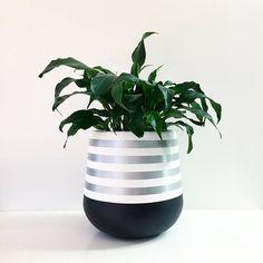 Hand-painted lightweight indoor plant pot white and silver Painted Flower Pots, Painted Pots, Hand Painted, Faux Plants, Potted Plants, Indoor Plant Pots, Cement Crafts, Concrete Planters, Plantation