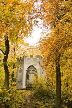 Geniet van de mooie #herfstkleuren tijdens een #wandeling bij Vogelenzang