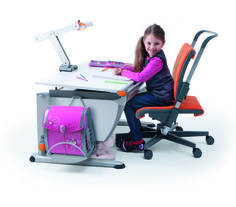 moll Runner desk with the Scooter chair, and the mobilight.
