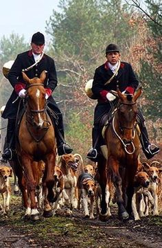 I hate fox hunting but the pictures is pretty cool