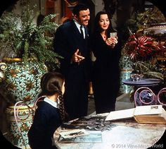 'The Addams Family'—in spooky ooky color Morticia Addams, Gomez And Morticia, The Addams Family Cast, Adams Family, Family Tv Series, Charles Addams, Carolyn Jones, Black And White Cartoon, The Munsters