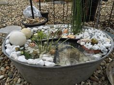 Mini pond in a galvanized trough Garden Crafts, Patio Plants, Small Water Gardens, Garden Deco, Mini Garden, Garden Fountains, Plants, Backyard, Container Water Gardens