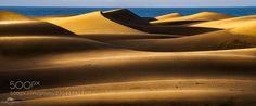 Gold symphony (Isabella Tabacchi / Carpi / Italy) #NIKON D7100 #landscape #photo #nature