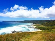 Hiking through valleys and along sand in Apollo Bay. This picture was taken after running into the largest snake I've ever seen. There's always something trying to kill you in Australia!  #australia #victoria #apollobay greatoceanroad #beach #coast #coastline #waves #clouds #nature #nature_perfection #exploretocreate #explore #adventure #travel #traveler #traveling #hiking #wanderlust #backpacking #roadtrip by amybraunz http://ift.tt/1LQi8GE
