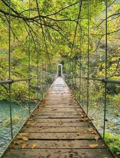 "From the Bridges board/category. [Bridge in Parque Nacional Fragas del Eume, Galicia, Spain (by RTH FOTOS). [Bridges have lots of ""lines."" Also, this bridge reminds me of train tracks that have lots of lines. Beautiful Places To Visit, Oh The Places You'll Go, Beautiful World, Places To Travel, Travel Destinations, Magic Places, Voyage Europe, The Great Outdoors, Wonders Of The World"