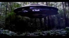 Colorado UFO abduction video released footage 2015 I was Taken Aboard a Flying Saucer Colorado UFO abduction video released footage 2015 I shot this . Mysteries Of The World, Ancient Mysteries, Ancient Artifacts, Aliens And Ufos, Ancient Aliens, Alien Videos, Ancient Astronaut Theory, Alien Crafts, Alien Abduction