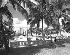 Fort Myers Florida 1950