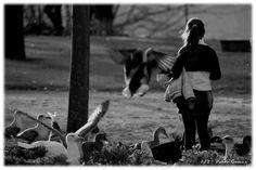 Jardins do Palácio de Cristal / Jardines del Palacio de Cristal / Gardens of the Crystal Palace [2012 - Porto / Oporto - Portugal] #fotografia #fotografias #photography #foto #fotos #photo #photos #local #locais #locals #cidade #cidades #ciudad #ciudades #city #cities #europa #europe #pessoa #pessoas #persona #personas #people #street #streetview #jardim #jardin #garden