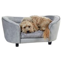 Let your furry friend lounge comfortably on this stylish pet bed, featuring a wood frame and foam cushioning.  Product: Pet bed