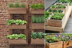 Resultado de imagem para jardim em caixa de madeira