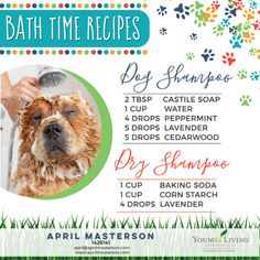 How to Use Essential Oils with Dogs – Part 3 Diy Dog Shampoo, Dry Shampoo, Essential Oils For Babies, Young Living Essential Oils, Shampooing Sec, Coconut Oil For Dogs, Dry Coconut, Oils For Dogs, Young Living Oils
