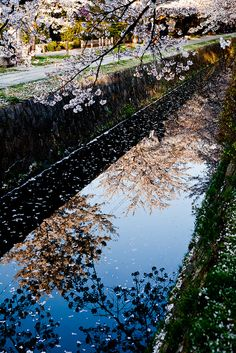 Kyoto February by Hakuei_Photo (please critique my works), via Flickr.