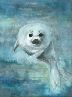 Arctic Swimmer - Harp Seal - Fine Art Archival Giclee Print 5 x 7 by Molly Harrison