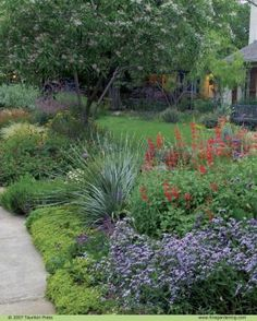 Capitalize on your conditions. This front-yard garden is made up of plants that thrive in a hot and dry climate.