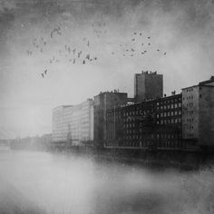 Industrial Zone / Black and White  Mrs. White  Germany  http://STRKNG.com/photographer-mrs.+white.55070c9bd1f0b30677cnoa9bg655070c9bd1f63.html    #Black_and_White #Germany #bestof #international #contemporary #photography #strkng #strkng_stream