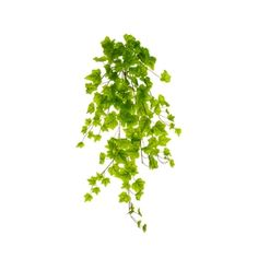 Artificial green ivy Green Plants, Artificial Plants, Houseplants, Ivy, Herbs, Parsley, Food, Fake Plants, Faux Plants