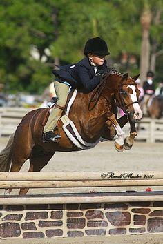 cute pony!