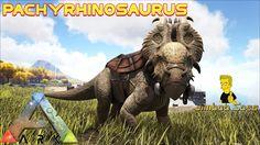 ARK Pachyrhinosaurus Tame